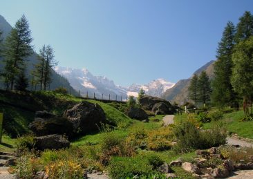 parco-nazionale-gran-paradiso