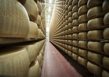 parmigiano_Caseifici-Aperti_ok-scaled