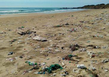 inquinamento mare plastica