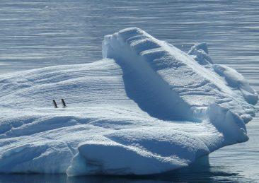 polo-nord_ghiaccio_iceberg
