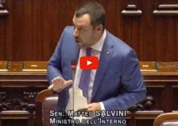 salvini-play2
