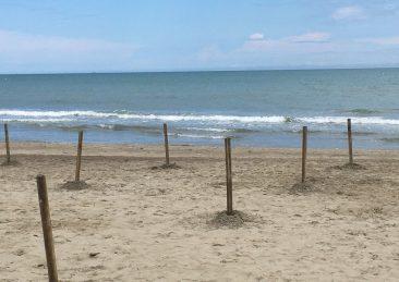 spiagge-libere-riccione-1-scaled