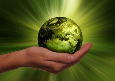 ambiente ecologia sostenibilità