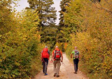 trekking cammino di dante firenze ravenna